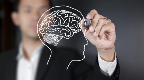 human-brain-2061-1404880190.jpg